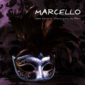 The Marcello Player 歌手頭像