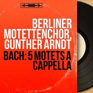 Berliner Motettenchor, Günther Arndt 歌手頭像