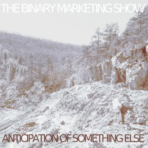 The Binary Marketing Show