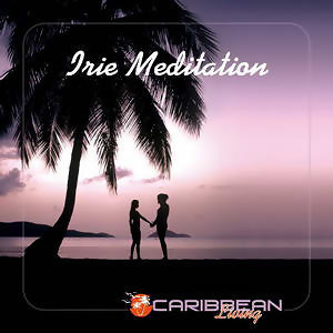 Irie Meditation 歌手頭像