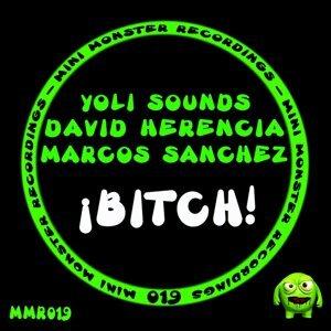 David Herencia, Marcos Sanchez, Yoli Sounds 歌手頭像