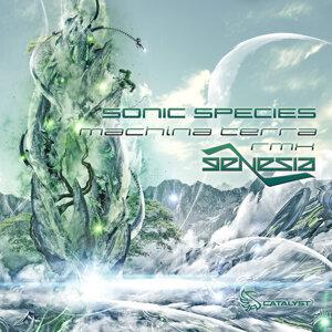 Sonic Species 歌手頭像