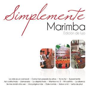 Marimba Orquesta Reyna Tuxtleca 歌手頭像