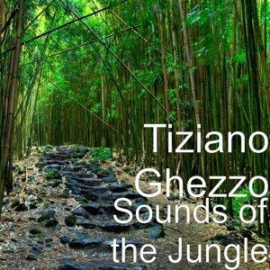 Tiziano Ghezzo 歌手頭像