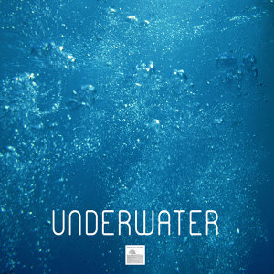 Underwater Sounds of Nature 歌手頭像