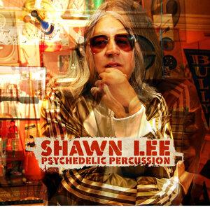 Shawn Lee 歌手頭像