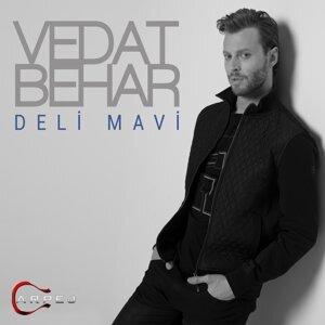 Vedat Behar 歌手頭像