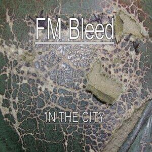 FM Bleed 歌手頭像