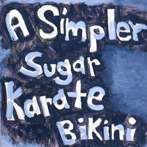 Karate Bikini 歌手頭像