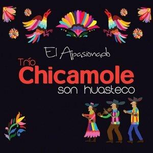 Trio Chicamole Son Huasteco 歌手頭像
