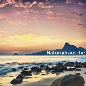 Entspannung Natur 歌手頭像