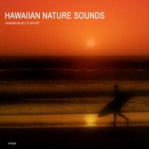 Hawaiian Music of Nature 歌手頭像