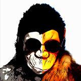 X monkey