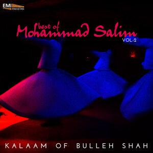 Mohammad Salim 歌手頭像