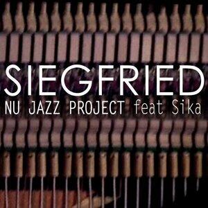 Nu Jazz Project 歌手頭像