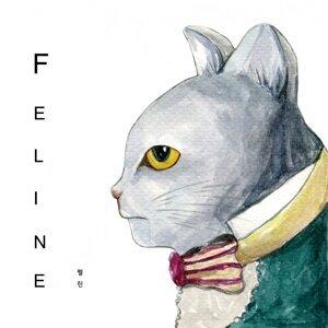 Feline 歌手頭像