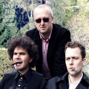 Najponk Trio 歌手頭像