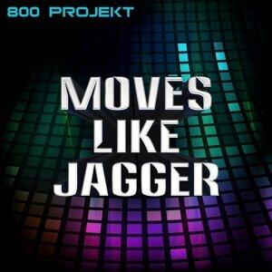 800 Projekt 歌手頭像