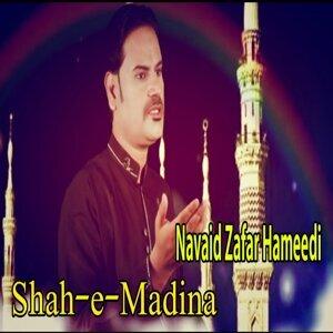 Navaid Zafar Hameedi 歌手頭像