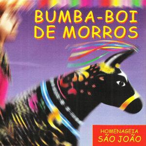 Bumba-boi de Morros 歌手頭像