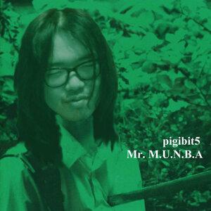 Pigibit5