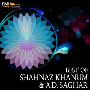 Shahnaz Khanum | A.D. Saghar 歌手頭像