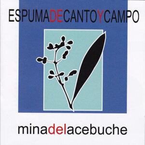Espuma de Canto y Campo 歌手頭像