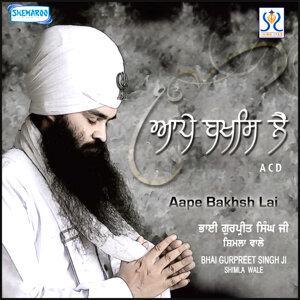 Bhai Gurpreet Singh Shimla Wale 歌手頭像