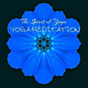 Amazing Yoga Sounds 歌手頭像