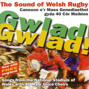 Undeb Rygbi Cymru / Welsh Rygbu Union 歌手頭像