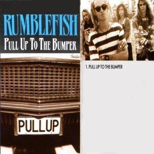 Rumblefish 歌手頭像