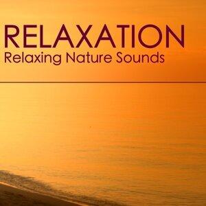 Chakra Balancing Sound Therapy 歌手頭像