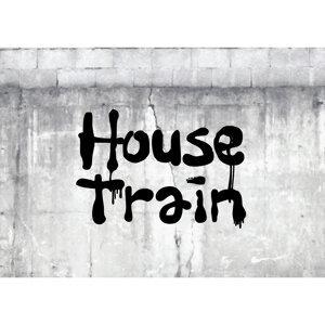 House Train 歌手頭像