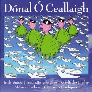 Dónal Ó Ceallaigh 歌手頭像