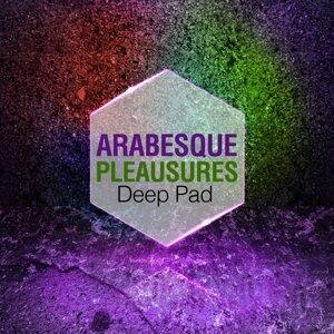 Arabesque Pleasures 歌手頭像