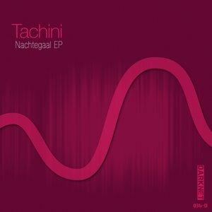 Tachini 歌手頭像