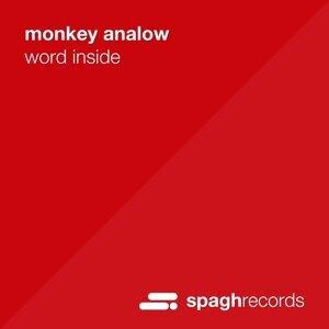Monkey Analow 歌手頭像