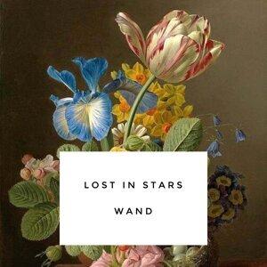 Lost in Stars