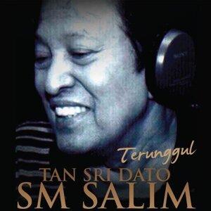 SM Salim アーティスト写真