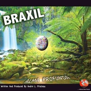 Brazil アーティスト写真