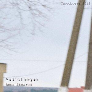 Audiotheque 歌手頭像
