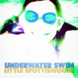 Little Spottiswoode 歌手頭像