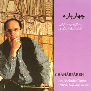 Mehrdad Torabi 歌手頭像