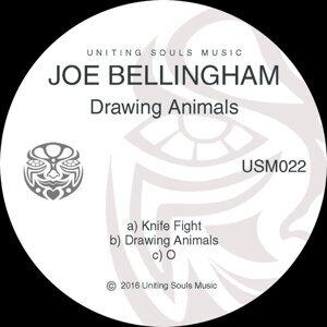 Joe Bellingham