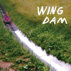 Wing Dam