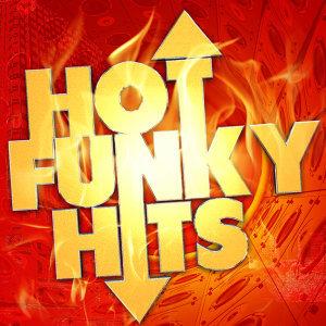 Funk 歌手頭像