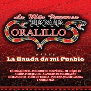 Banda Coralillos 歌手頭像