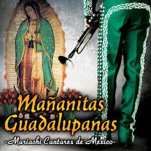 Mariachi Cantares De Mexico 歌手頭像