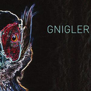 Gnigler 歌手頭像