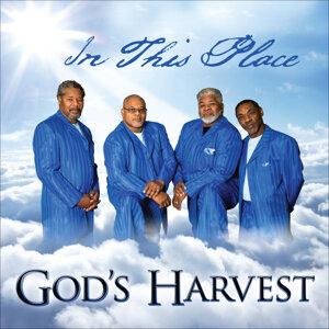 God's Harvest 歌手頭像